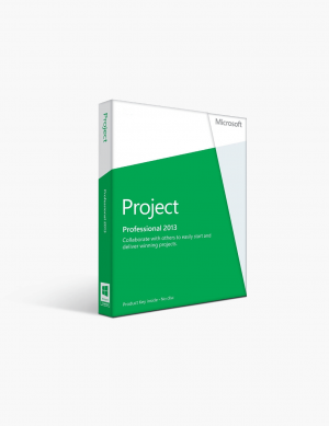 Microsoft Project 2013 Professional.