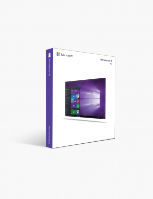 Microsoft Windows 10 Pro Edition 64-bit.